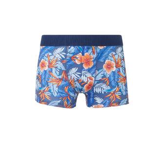 Boxer bleu caribbeaniz blue.