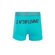 Boxer turquoise enflemmiz green.