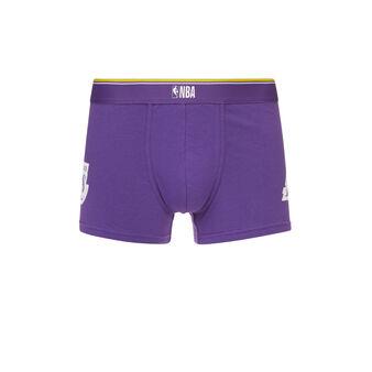 Boxer violet thelakeriz purple.